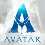 The Avtar Profile Picture