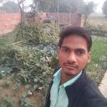 amitthakur564 Profile Picture