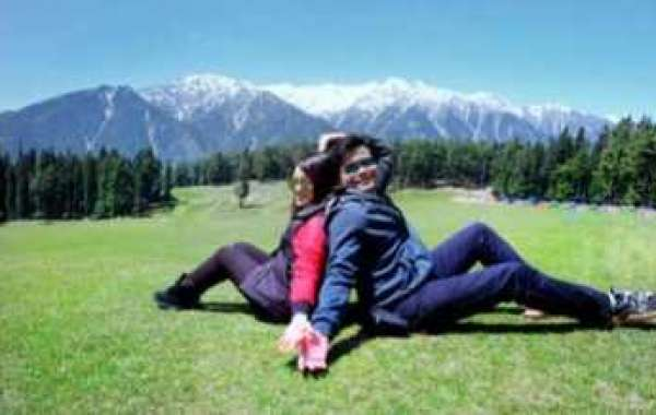 kashmir Trip Packages by Trip to India