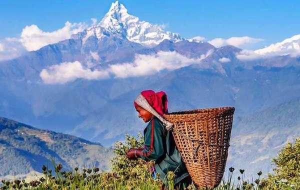 Viaje a india y nepal
