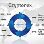 Cryptonex Reviews